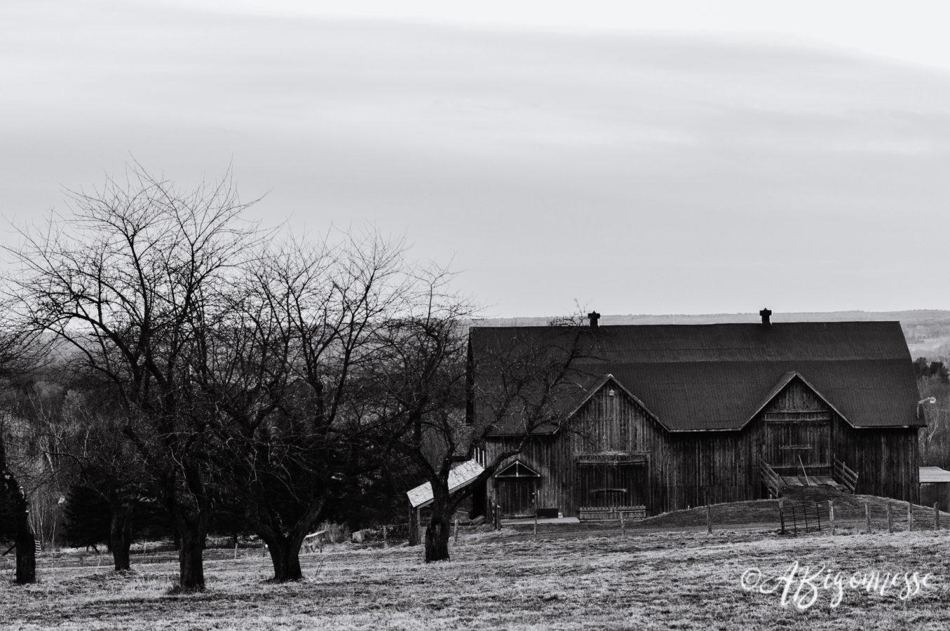 Vieille ferme, Shefford, Québec